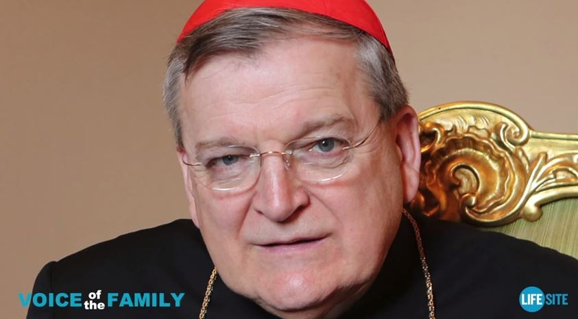 Cardinal Raymond Burke says he's being transferred out of his powerful post in the Vatican courts. - VIA YOUTUBE