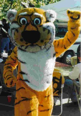 See? Truman the Tiger is optimistic. Nothing to worry about.
