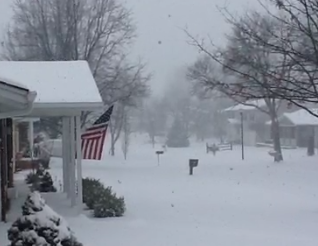 Snow Day! Videos below. - VIA