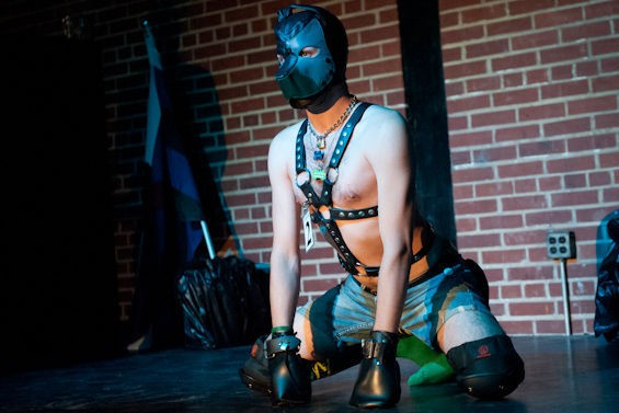 """A """"pup"""" competes at Bad Dog Bar & Grill."""