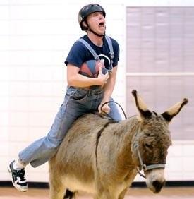 donkeybball.jpg