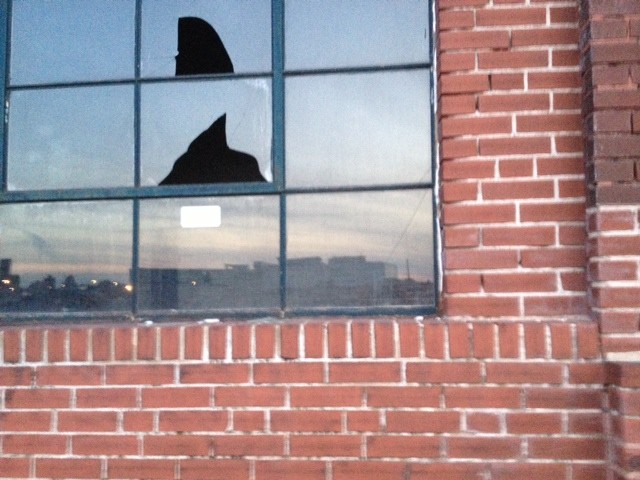 Broken window in what remains at the Pevely Dairy site.