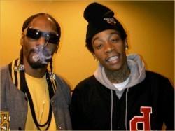 Many talented musicians enjoy marijuana.