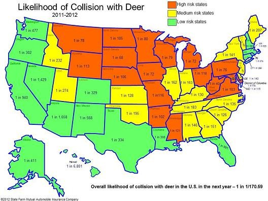 deer_collisions.jpg
