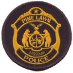 pine_lawn_patch.jpg