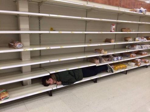 Seen here, one desperate St. Louis shopper apparently loses her mind and tries to become a loaf of bread. - TWITTER