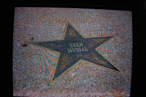 The Delmar Loop, and Stan Musial's star gets a cameo.