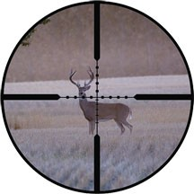 Deer season will be allright - IMAGE VIA