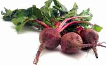 These beets won't kill you. Yet. - WIKIMEDIA COMMONS