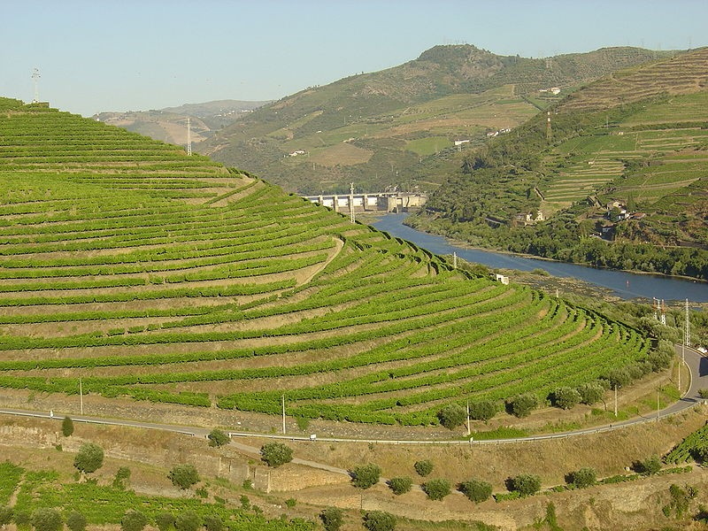 "Vineyards in the Douro river valley - USER ""HUSOND,"" WIKIMEDIA COMMONS"