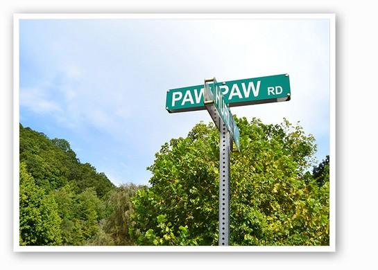 pawpawbook6.jpg