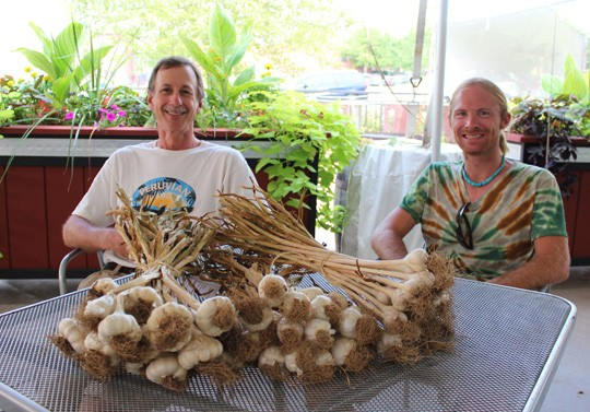 Schlafly gardener Jack Petrovic and assistant gardener Nolan Kowalski with various types of garlic including Creole Red, Music Pink and California Late - MABEL SUEN