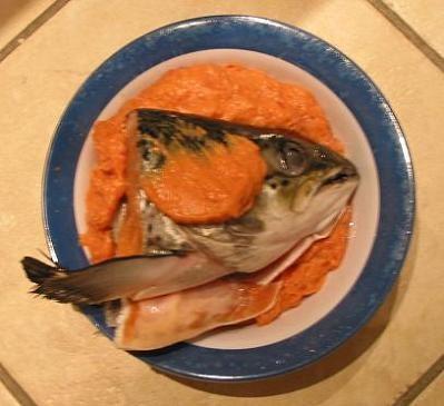 fish_head.JPG