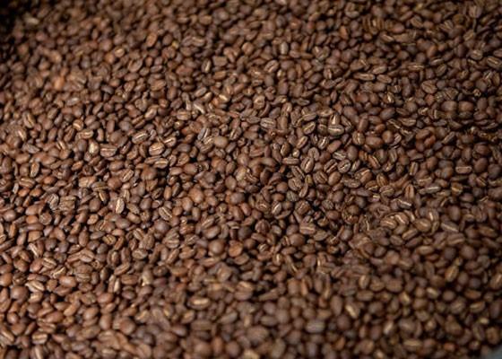 Beans at Kaldi's Coffee.   Jon Gitchoff