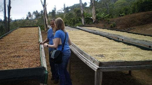 Looking over coffee at a micro-mill. - PHOTO COURTESY TYLER ZIMMER