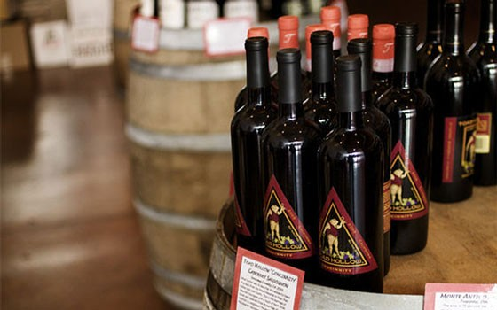 Inside Copia Urban Winery. | Jennifer Silverberg