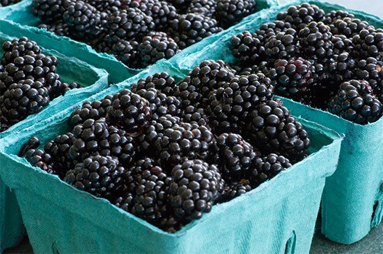 Item 36 on the St. Louis area bucket list: Pick fresh fruit at Eckert's! - WIKIMEDIA COMMONS