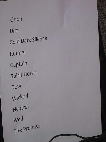 Sea Wolf setlist - DIANA BENANTI