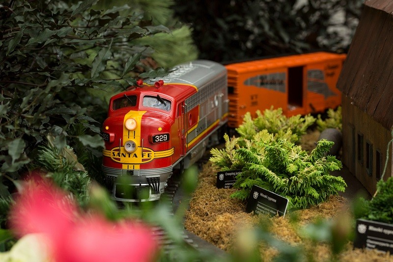 The trains aren't real at Gardenland Express, but the foliage is. - COURTESY OF THE MISSOURI BOTANICAL GARDEN