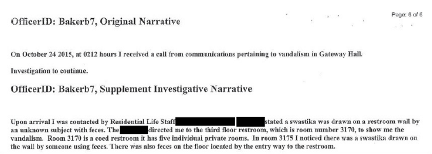 A screengrab of the police report.