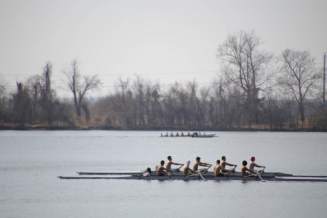 A rowing crew on Creve Coeur Lake - PHOTO COURTESY OF FLICKR/PAUL SABLEMAN