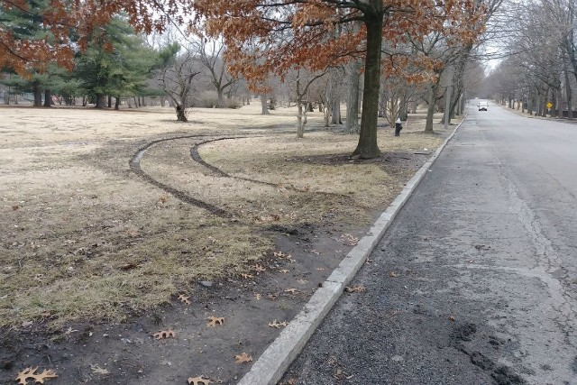 The only sign of the missing van was a set of tire tracks in Tower Grove Park. - GOFUNDME