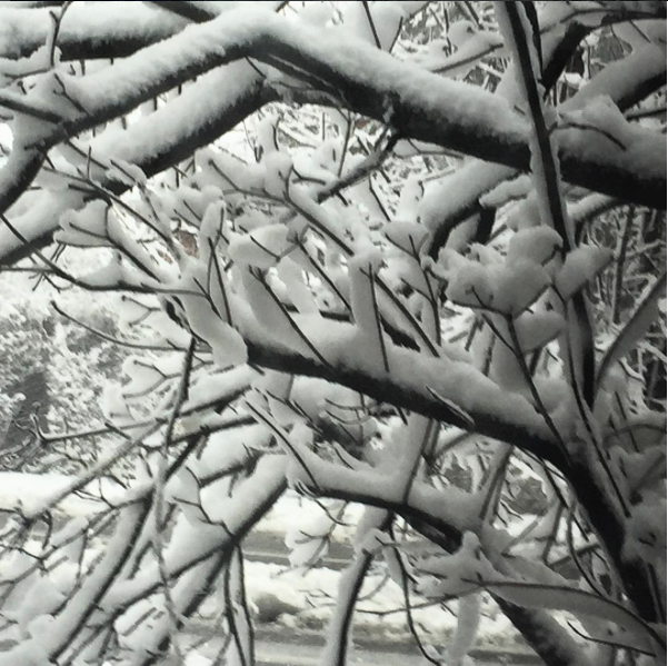 Getting all artsy in the snow. - PHOTO COURTESY OF INSTAGRAM / JPLOVESCOTTON