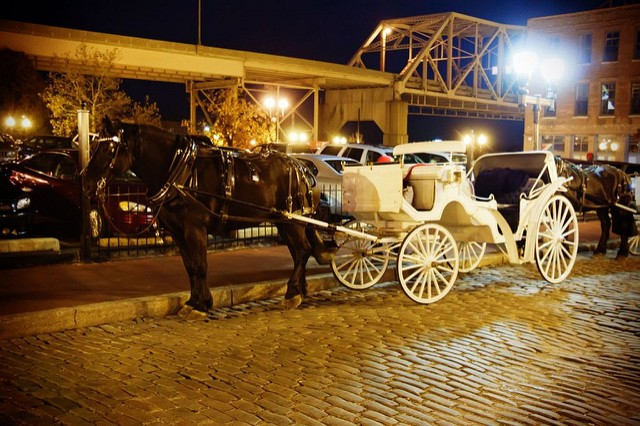 Horse-drawn carriages are a popular tourist attraction downtown. - PHOTO COURTESY OF FLICKR/RIAN CASTILLO