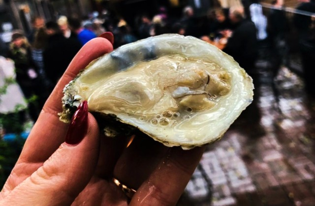Love Oysters and Booze? RFT's Shuck Yeah Is the Place to Be This Sunday