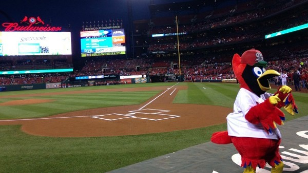 More bad news, Cards fans. - DOYLE MURPHY