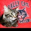 "Rally Cat is getting ready for his next closeup — and selling shirts to benefit the St. Louis Feral Cat Outreach. See <a href=""http://www.108stitches.com/Gear/Detail_108/STL-RALLY-CAT-TEE/1-30550/#.WZSlLGR97u2"" target=""_blank"">108 Stitches for more details</a>."