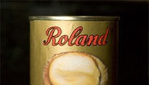 Roland King Top Shell