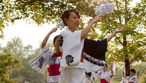 Japan Blossoming