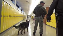 Watch Drug Dogs Search This South St. Louis County High School (VIDEO)