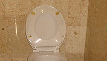SLU Doctor John Morley Invents Boner Quiz on Toilet, Earns $40,000