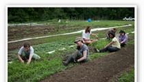 EarthDance Farms: A Model of Sustainability in Ferguson [PHOTOS]