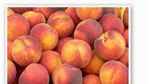 Pick-Your-Own Peaches Ripe at Eckert's