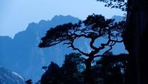 International Photography Collaborative Exhibition: China