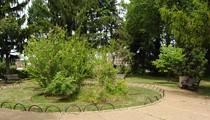 Aboussie Park