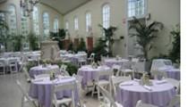 Piper Palm House-Cafe Madeleine