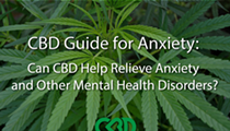 CBD Guide for Anxiety: Can CBD Help Relieve Anxiety and Other Mental Health Disorders?