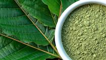 Best Kratom Powder: Buy Kratom Powder for Sale