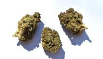 Best Cannabis Strain (Indica)