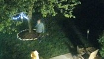 Wildwood Prowler Caught on Camera as He Spied on Woman