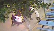 Delmar Loop Armed Robbery Suspects Seen on Surveillance Video