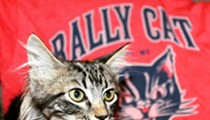 Let Us Respect Rally Cat's Privacy As He Has His Balls Cut Off