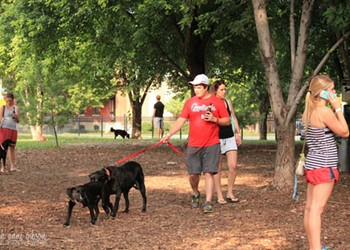 Soulard's Dog Park Aims for a Big Upgrade
