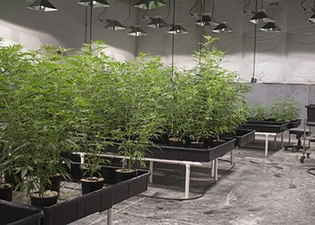 Medical pot is finally a constitutional right in Missouri. And the state is almost ready