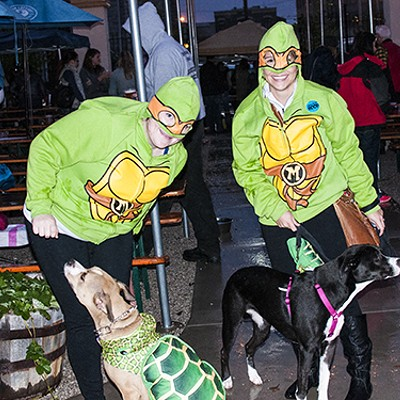 The Damp Dogs of Barktoberfest 2014