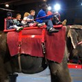 Garden Bros. Circus Shows at Chaifetz Canceled After Protests